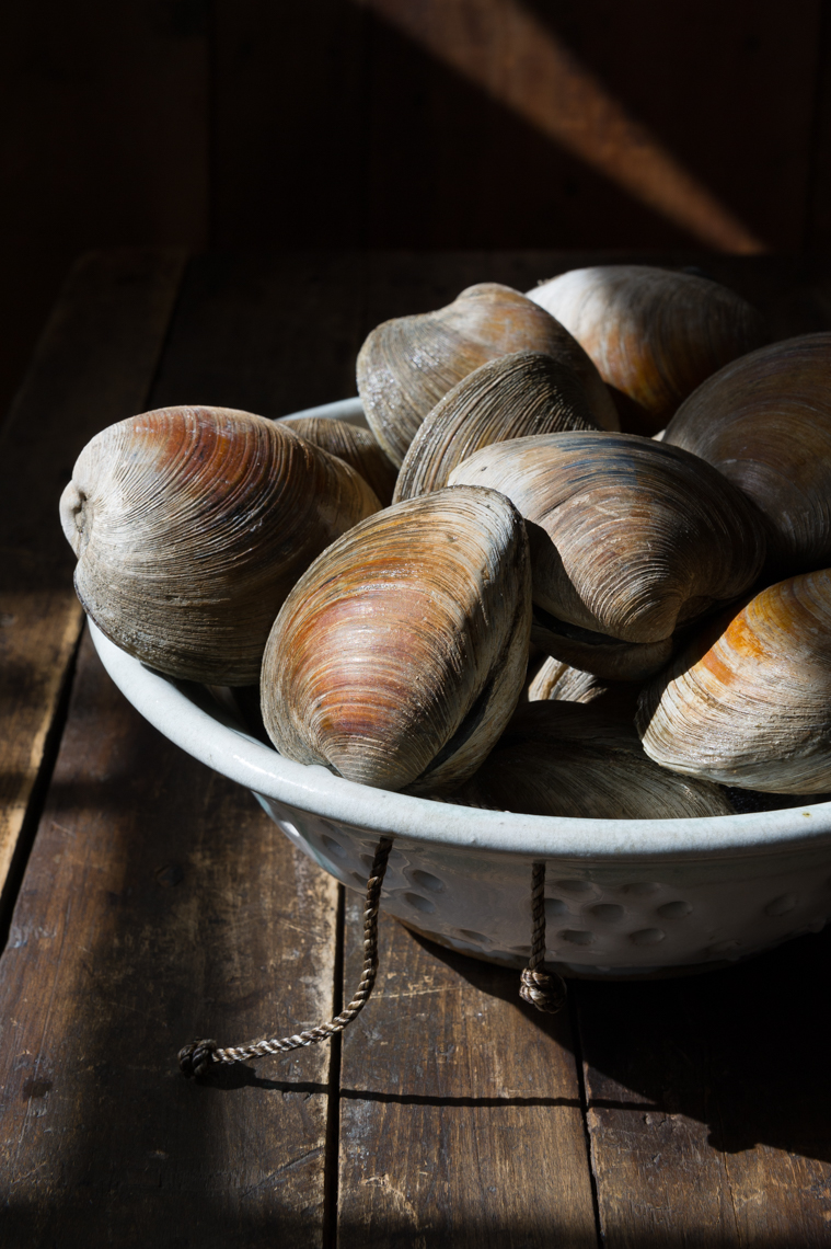 NYC Food Photographer - Clams
