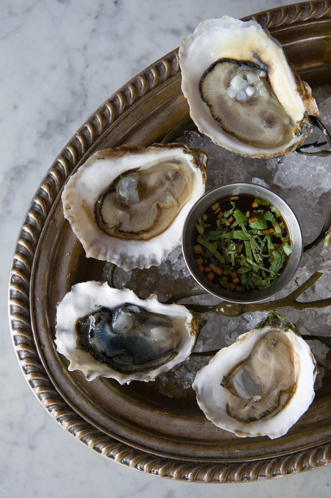 NYC Food Photographer – Sel Rrose Oysters