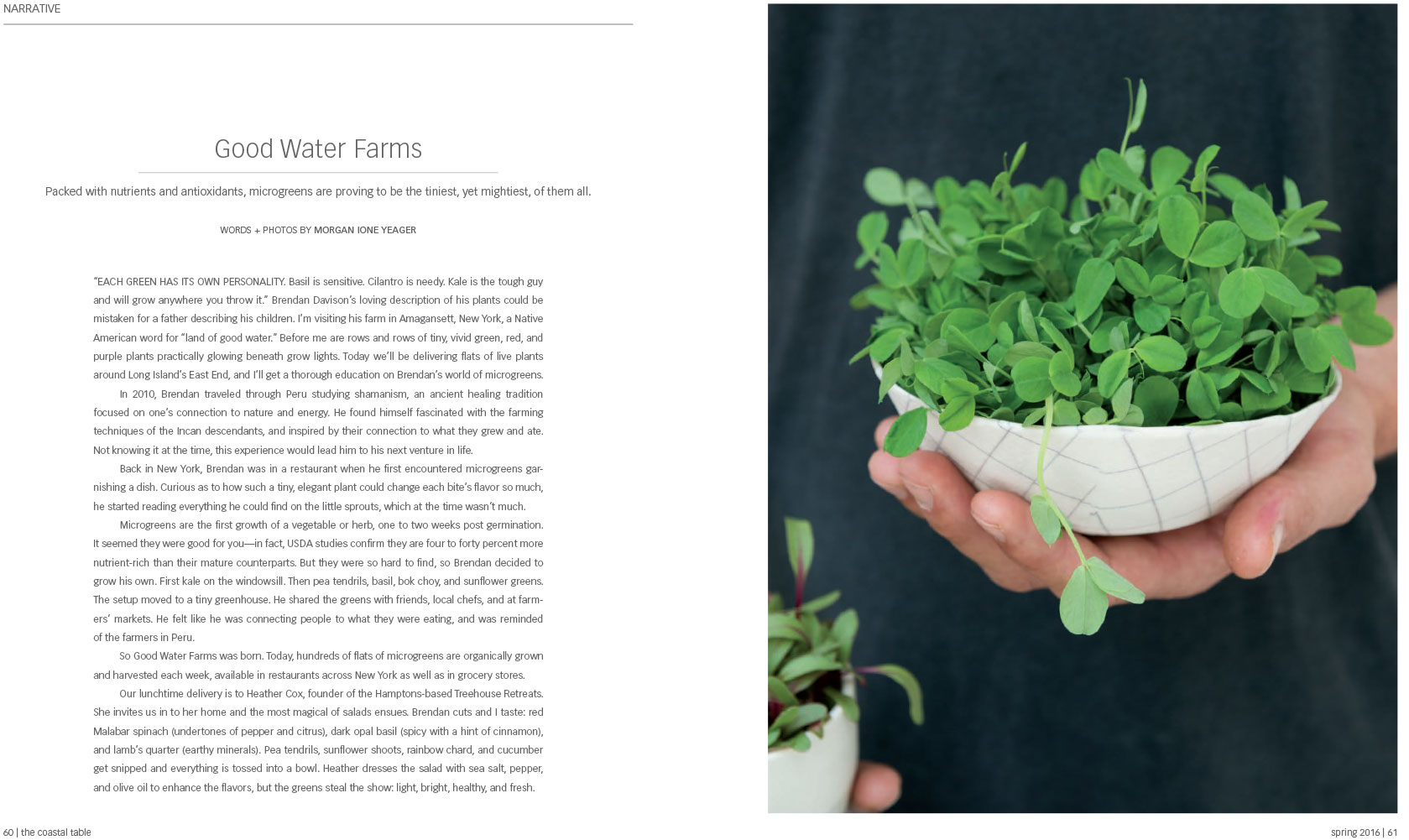 Goodwater Farms Micro Greens, The Coastal Table, Morgan Ione Yeager