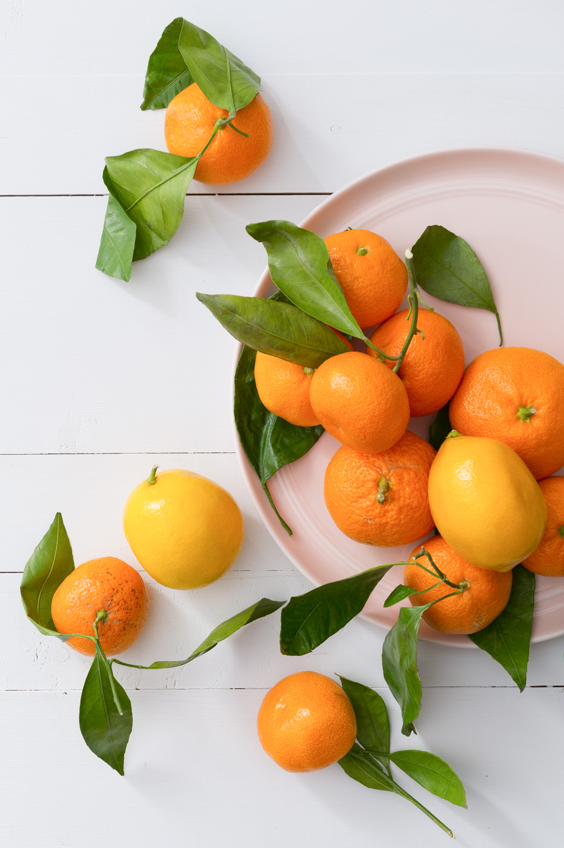 NYC Food Photographer - Citrus