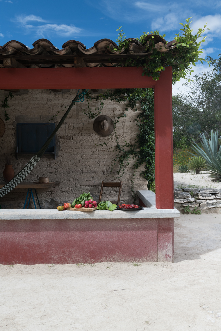 Oaxaca Ranch - Lifestyle Photographer NYC