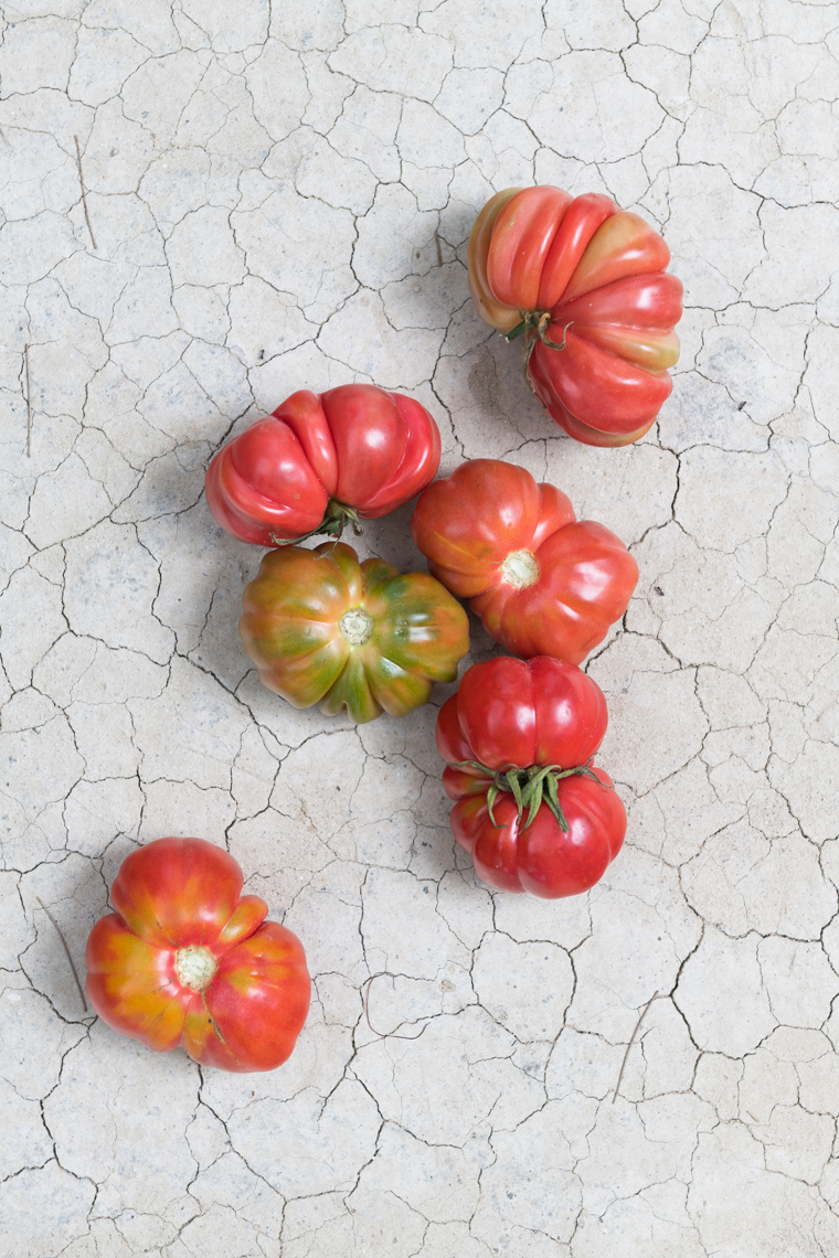 NYC Food Photographer - Heirloom Tomatoes on Clay